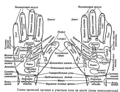 Массаж рук для женщин и мужчин